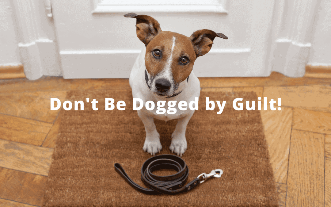 Don't Be Dogged by Guilt!
