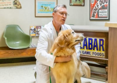 Dr. Rowan Examining a Big Dog on Floor