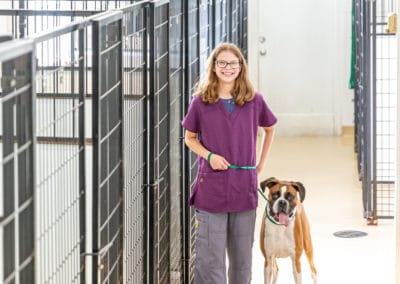 Katie in our boarding kennel
