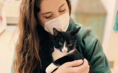 Latest on COVID/Coronavirus & Pets